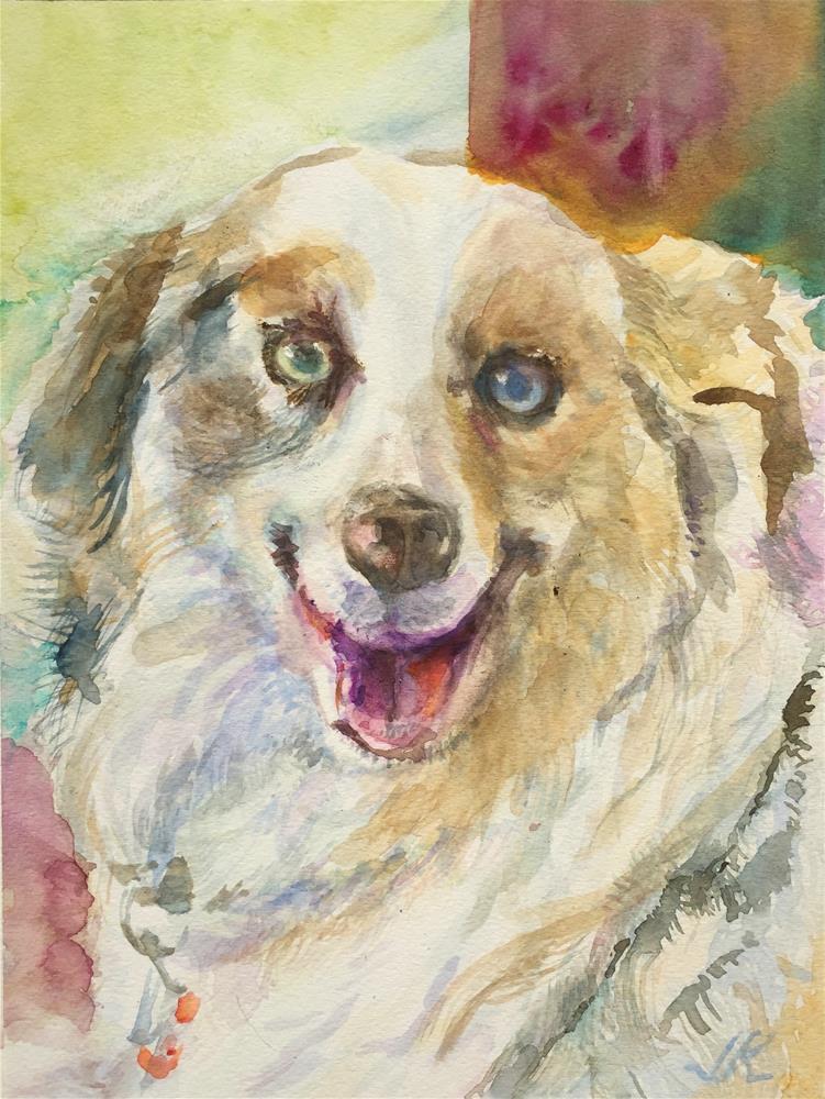 """""""Austrailian Shepherd"""" original fine art by Jean Krueger"""