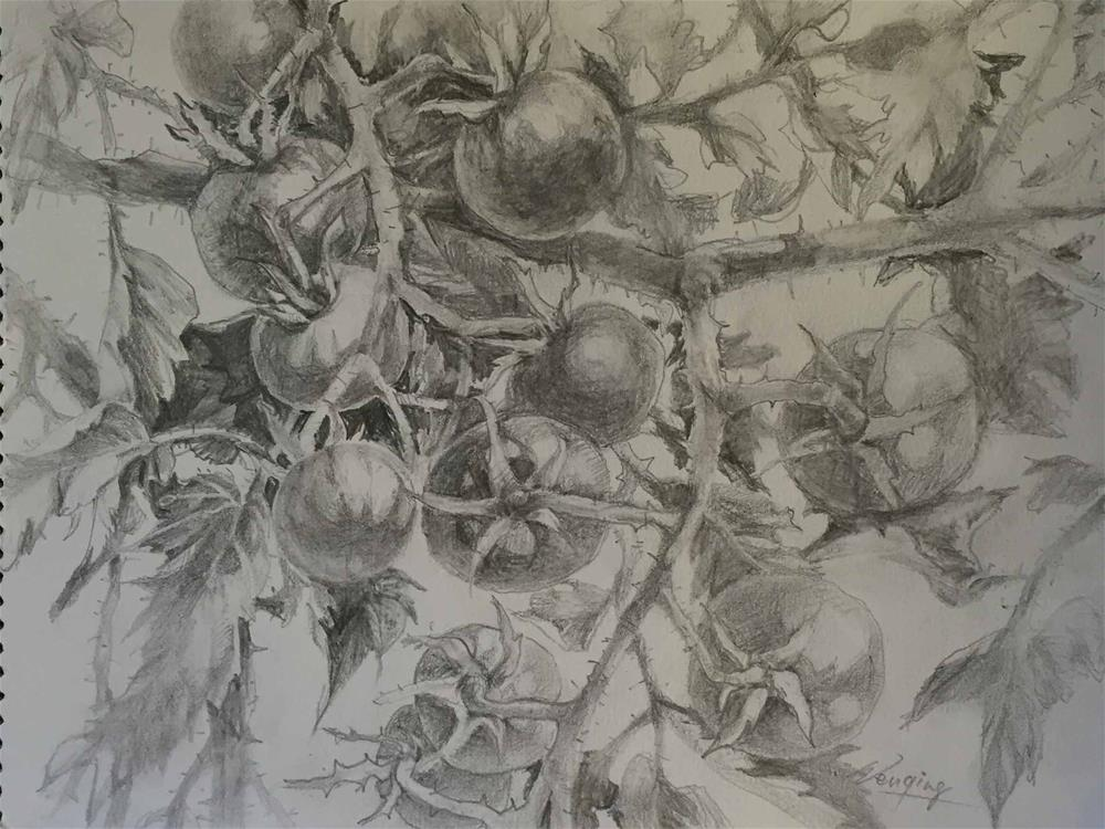 """grape tomato in my garden"" original fine art by Wenqing Xu"