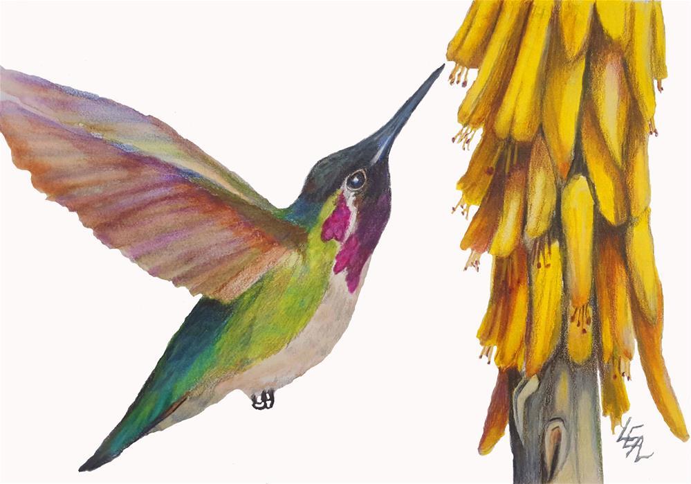 """Aloe Treasure"" original fine art by Anna Lisa Leal"