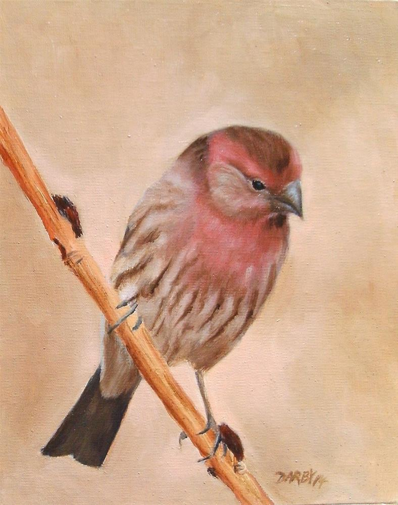 """Purple Finch"" original fine art by Lynn Darby"