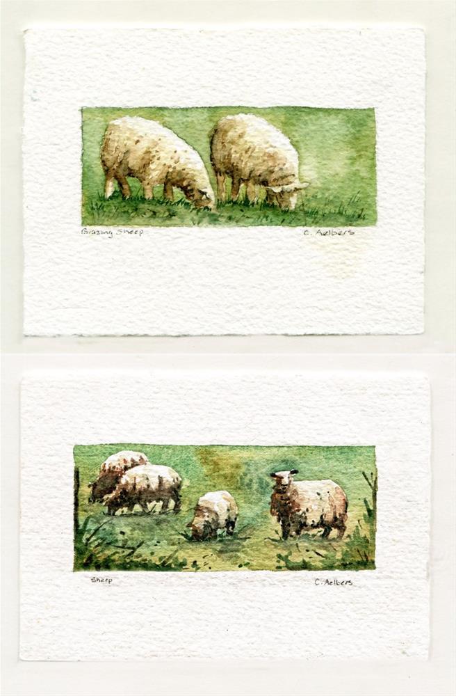 """Sheep and Grazing Sheep"" original fine art by Corinne Aelbers"