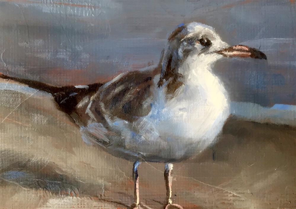 """Gull on the Beach"" original fine art by Gary Bruton"