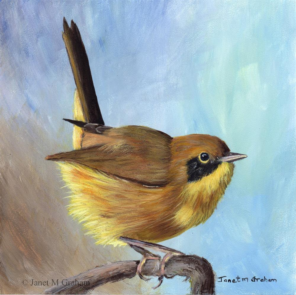 """Common Yellowthroat"" original fine art by Janet Graham"