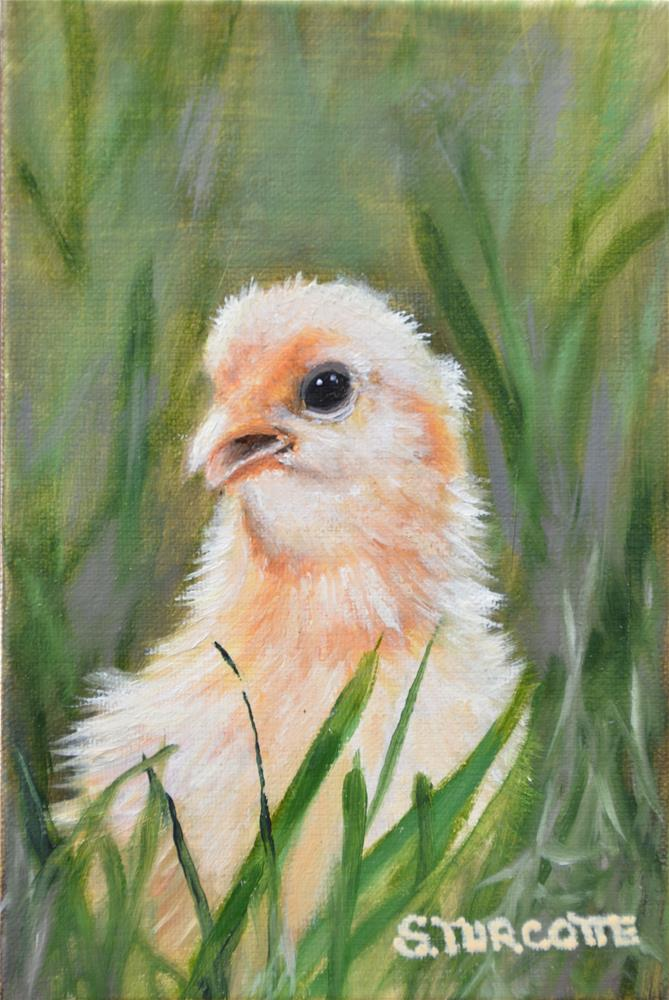 """Penelope Peeper"" original fine art by Shayna Turcotte"