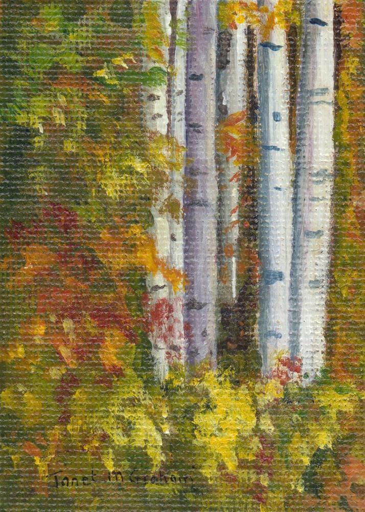 """Birch Trees 1"" original fine art by Janet Graham"