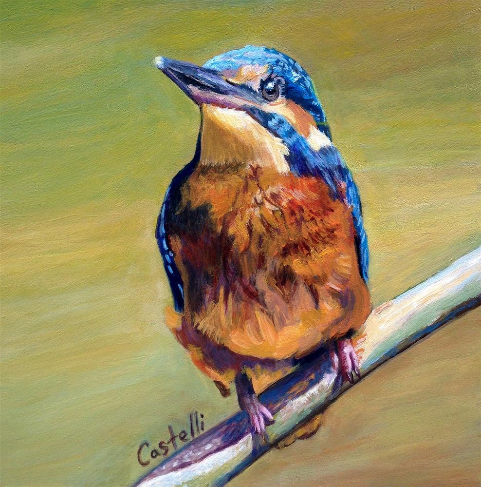 """Cosmopolitan Kingfisher"" original fine art by Anna Castelli"