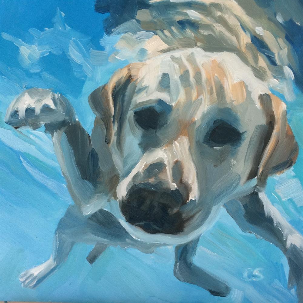 """Dog Paddle"" original fine art by Carol Stickley"