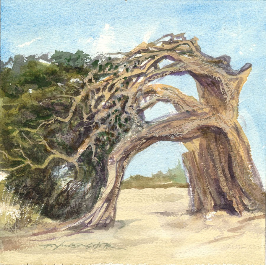 """Cypress Study"" original fine art by Rafael DeSoto Jr."