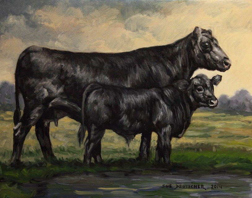"""Angus Cow and Calf"" original fine art by Sue Deutscher"