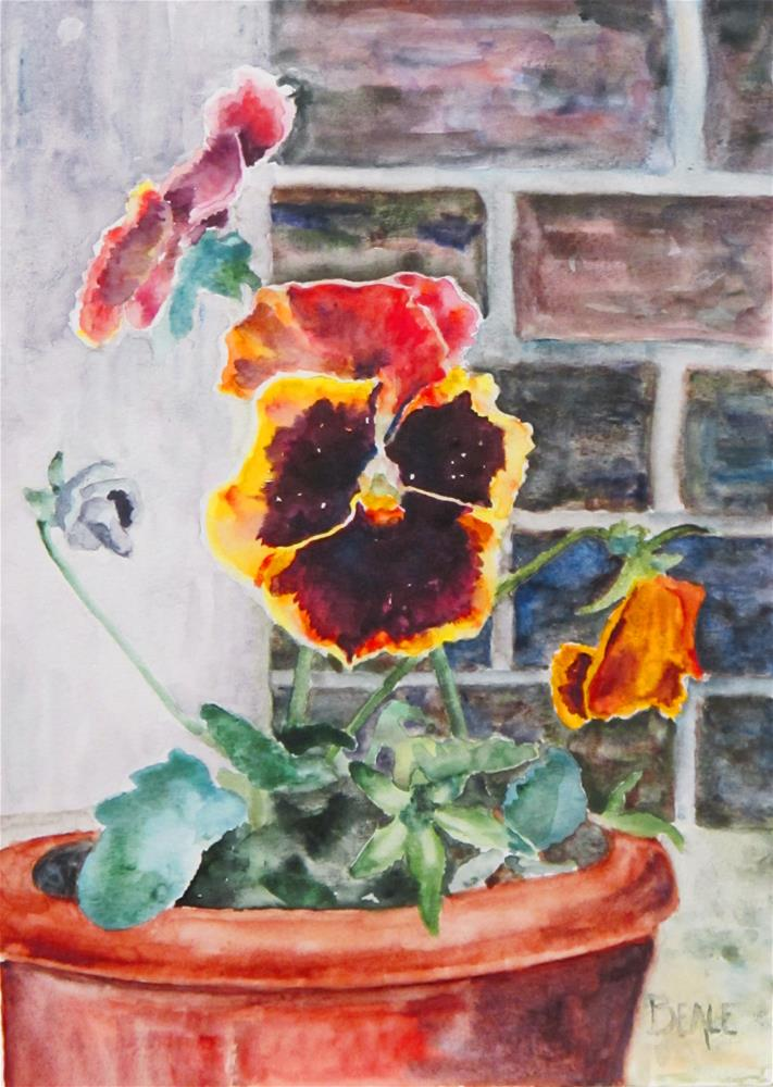 """Pansies from Wild Duck Soup Emporium"" original fine art by  David Beale"