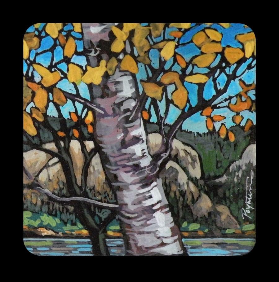 """3.02 Aspen Okanagan"" original fine art by Jan Poynter"