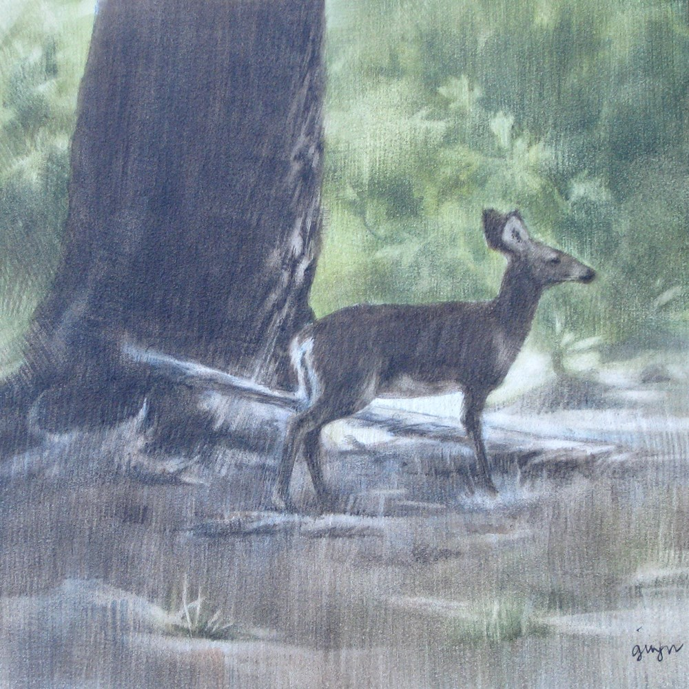 """In the Forest"" original fine art by Ginger Pena"