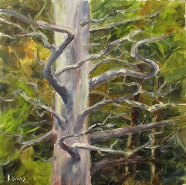 """""""Gnarly Old Tree"""" original fine art by Christine Lewis"""