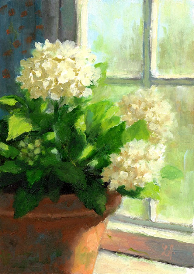 """WHITE HYDRANGEAS"" original fine art by Linda Jacobus"