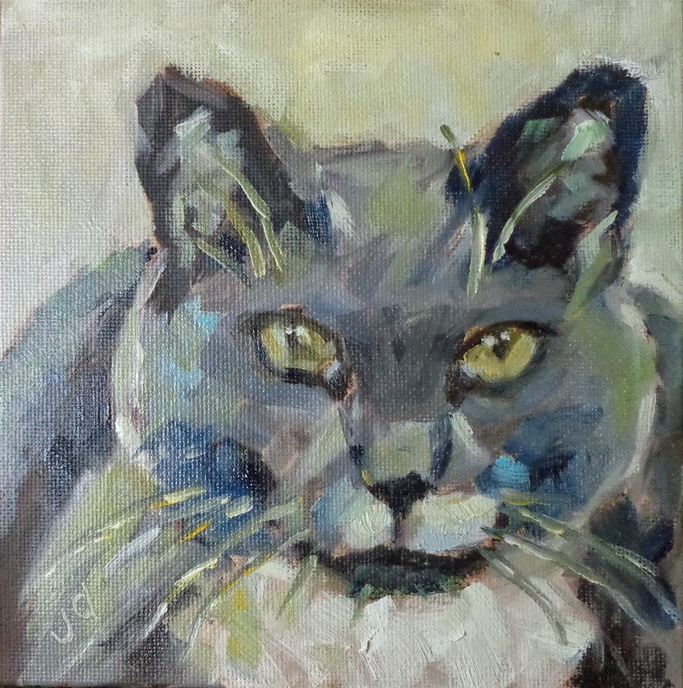 """Circle cat"" original fine art by Jean Delaney"