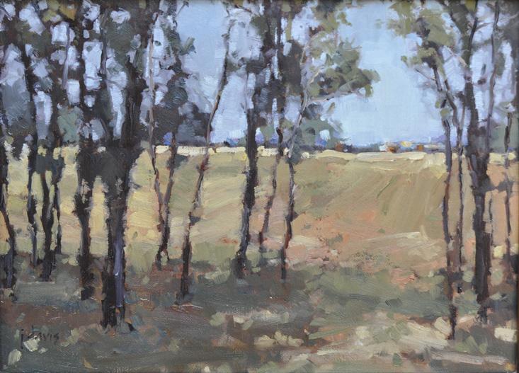 """""""Light Canopy"""" original fine art by Julie Davis"""