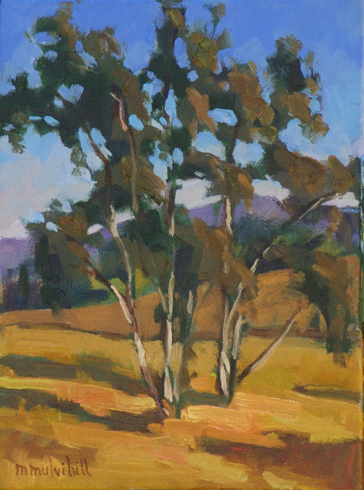 """Late Afternoon Eucalyptus"" original fine art by Mary Mulvihill"