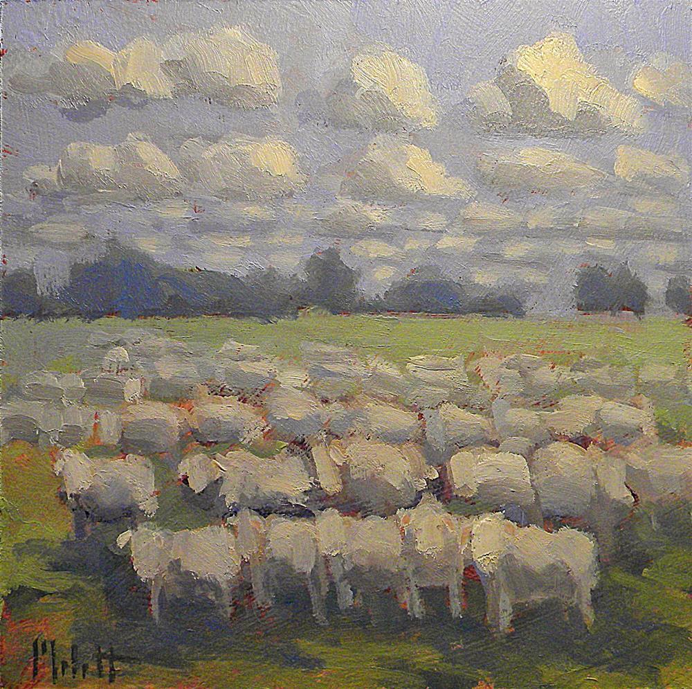"""Sheep Fleeced"" original fine art by Heidi Malott"