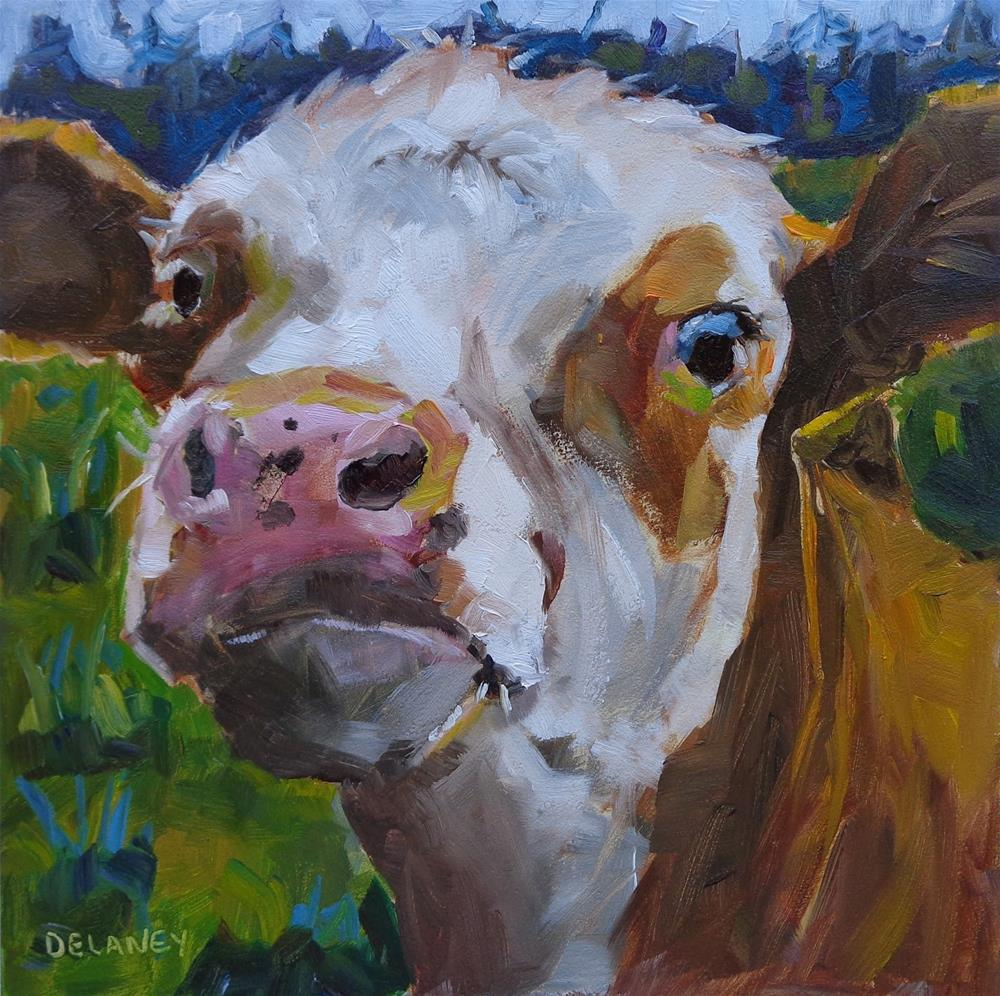 """Cow 136 ALFRED"" original fine art by Jean Delaney"