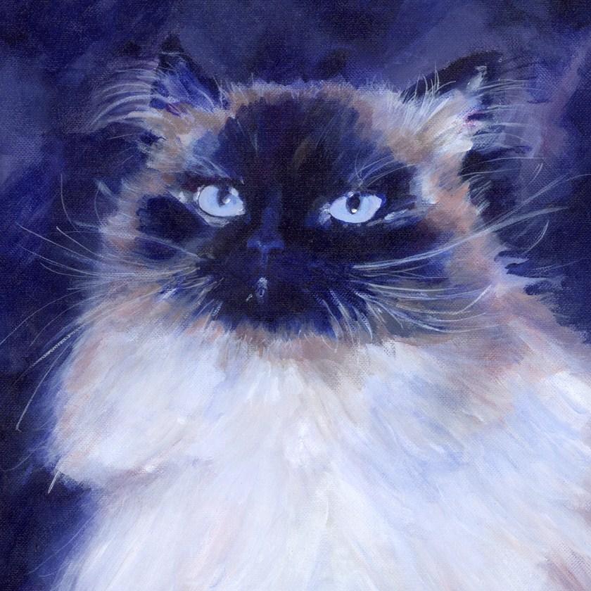 """Sterling"" original fine art by Pamela Gatens"