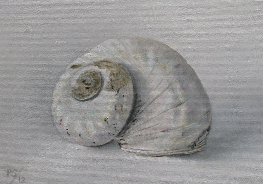 """Shell"" original fine art by Pera Schillings"