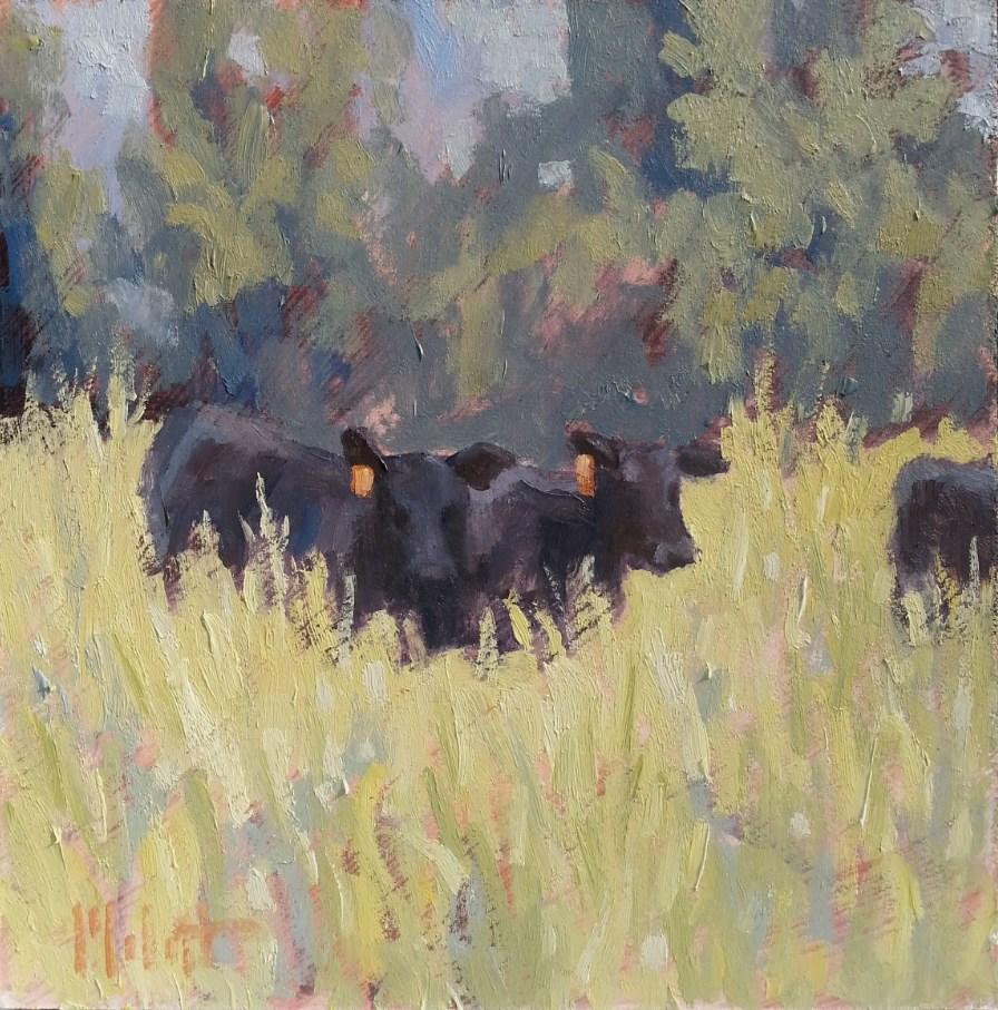 """Black Angus Cow Painting"" original fine art by Heidi Malott"