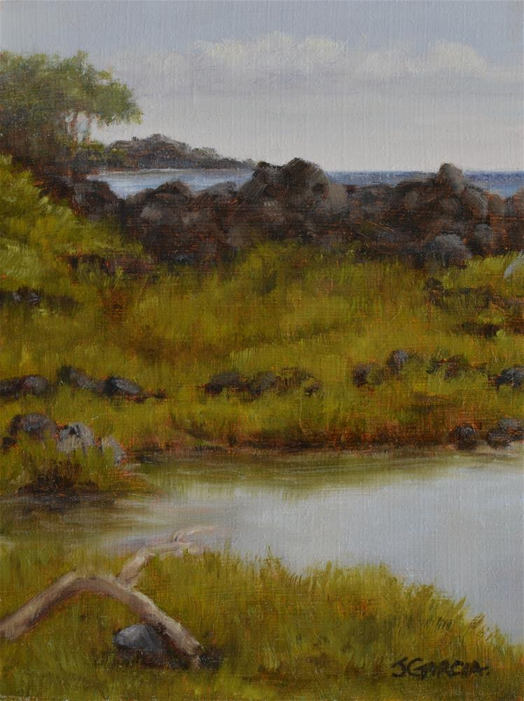 """Puna Hot Ponds"" original fine art by Jeannie Garcia"
