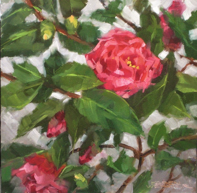 """Camellias"" original fine art by Karen Werner"