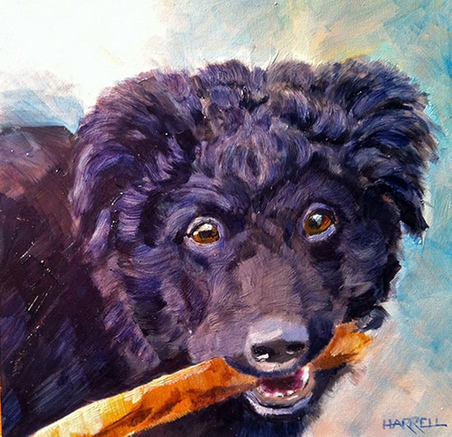 """""""Winnie"""" original fine art by Sue Harrell"""
