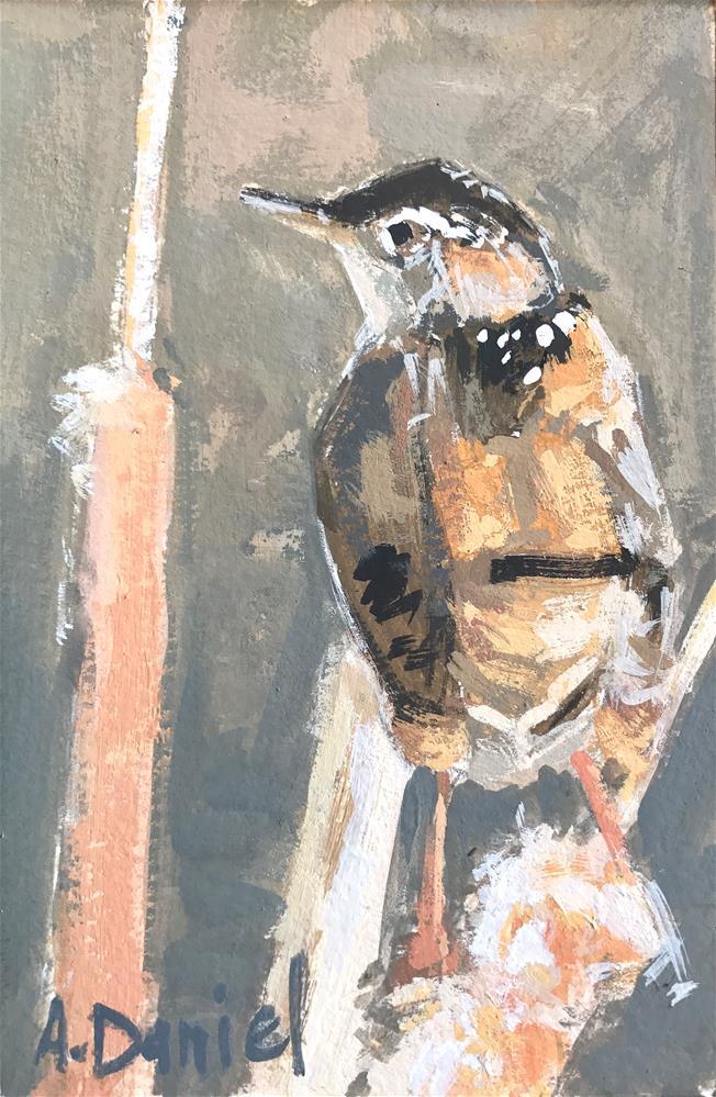 """Marsh Wren Calling #5"" original fine art by Andrew Daniel"
