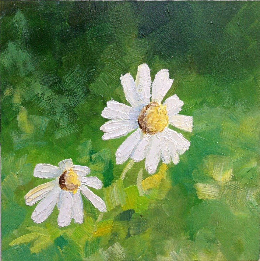 """white daisy"" original fine art by Hui (Hue) Li"