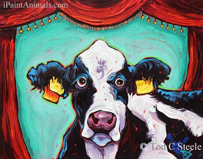 """Cow Painting: Performance Anxiety by Tod C Steele"" original fine art by Tod Steele"