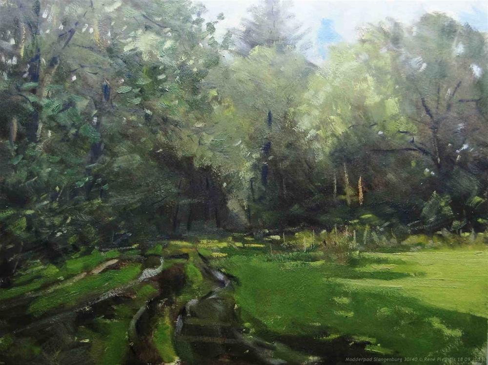 """""""Mudpath Slangenburg The Netherlands"""" original fine art by René PleinAir"""