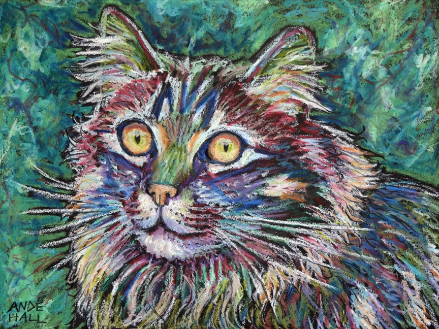 """Cat in Colors"" original fine art by Ande Hall"
