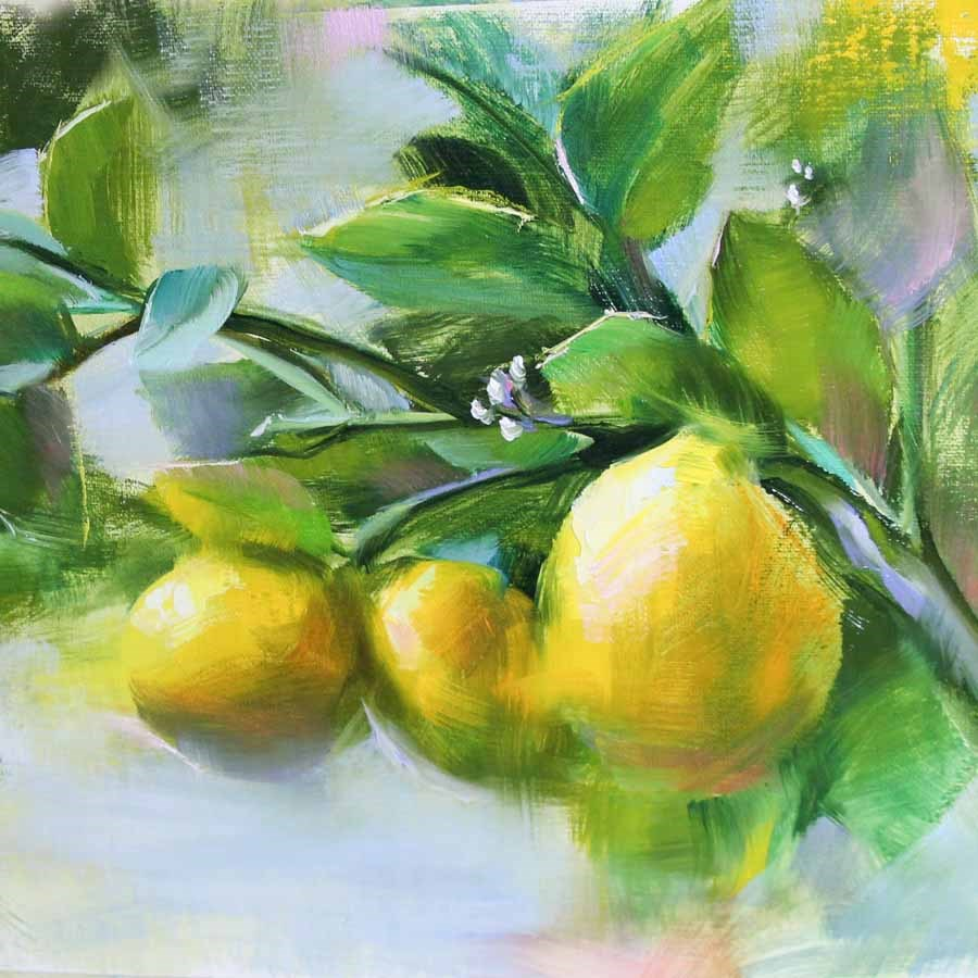 """Sunlit Lemons"" original fine art by Pamela Blaies"