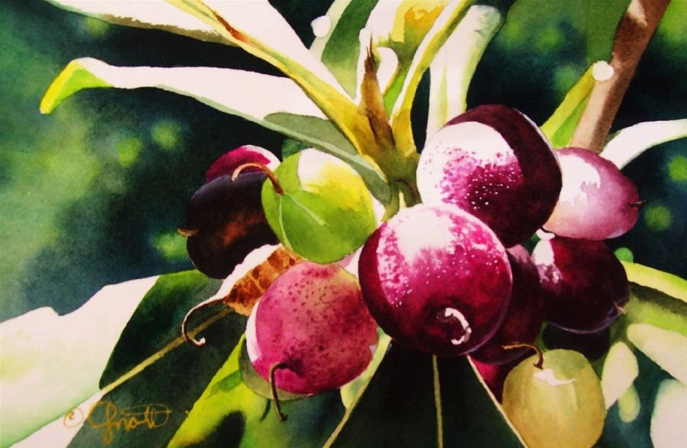 """Tropical Berries"" original fine art by Jacqueline Gnott, TWSA, WHS"