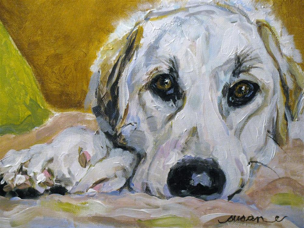 """Samson"" original fine art by Susan Elizabeth Jones"