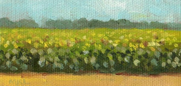 """Sunflowers Field"" original fine art by Marlene Lee"