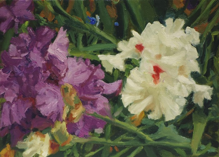 """""""Purple and White"""" original fine art by Daniel Fishback"""