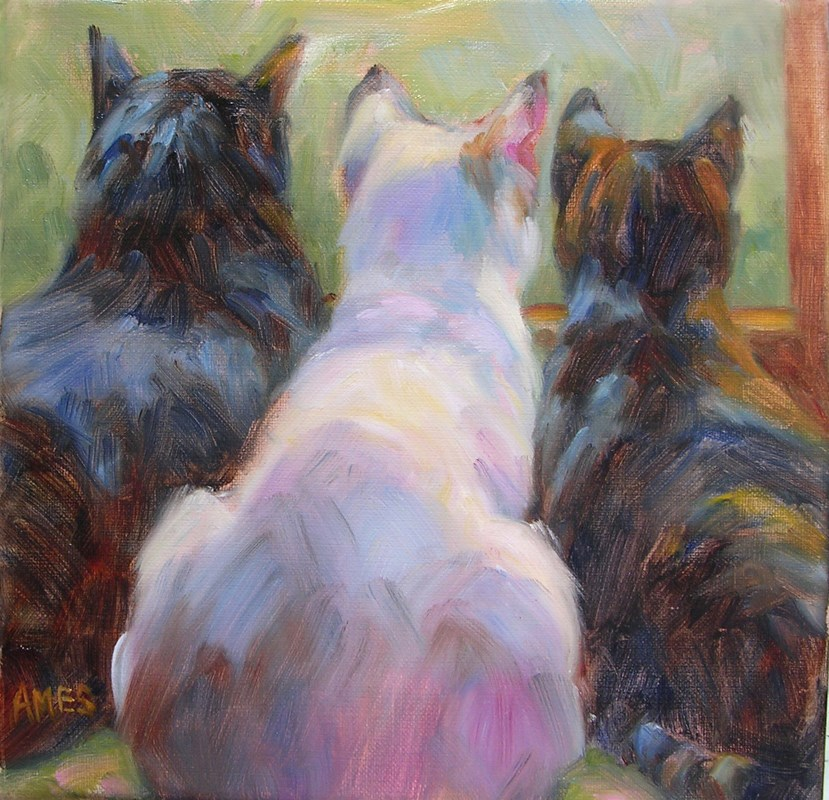 """Bird Watching"" original fine art by Debra Ames"