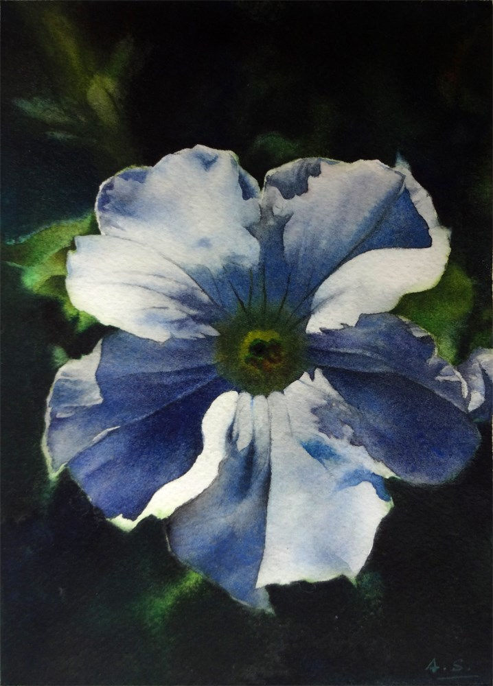 """Dawn Petunia"" original fine art by Arena Shawn"