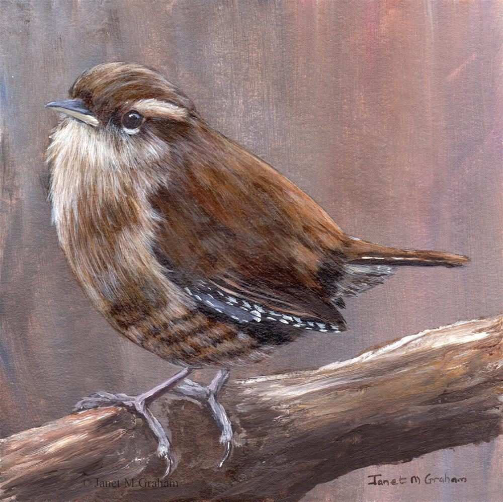 """Wren"" original fine art by Janet Graham"