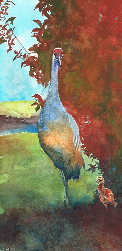 """""""Sandhill Crane Chick"""" original fine art by Annabel Chance"""