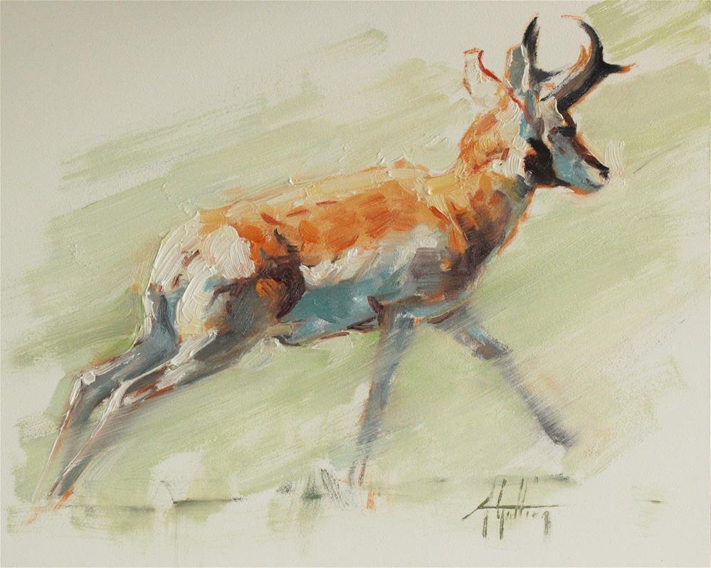 """Antelope Study #2"" original fine art by Abigail Gutting"