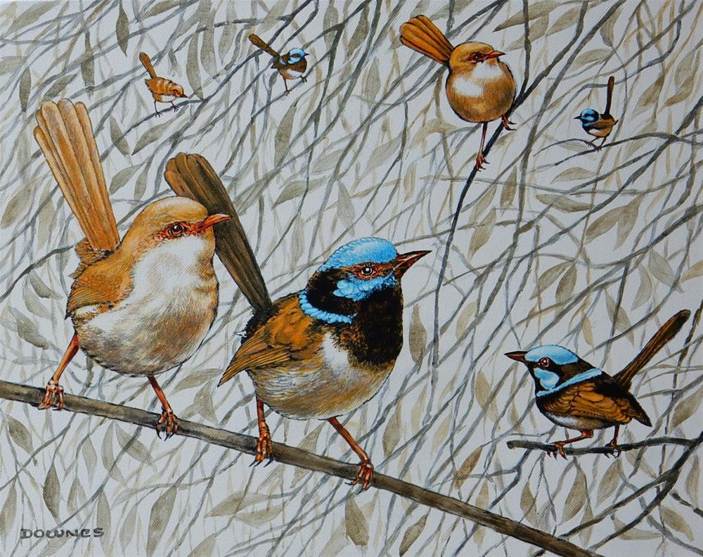 """293 BLUE FAIRY WRENS"" original fine art by Trevor Downes"