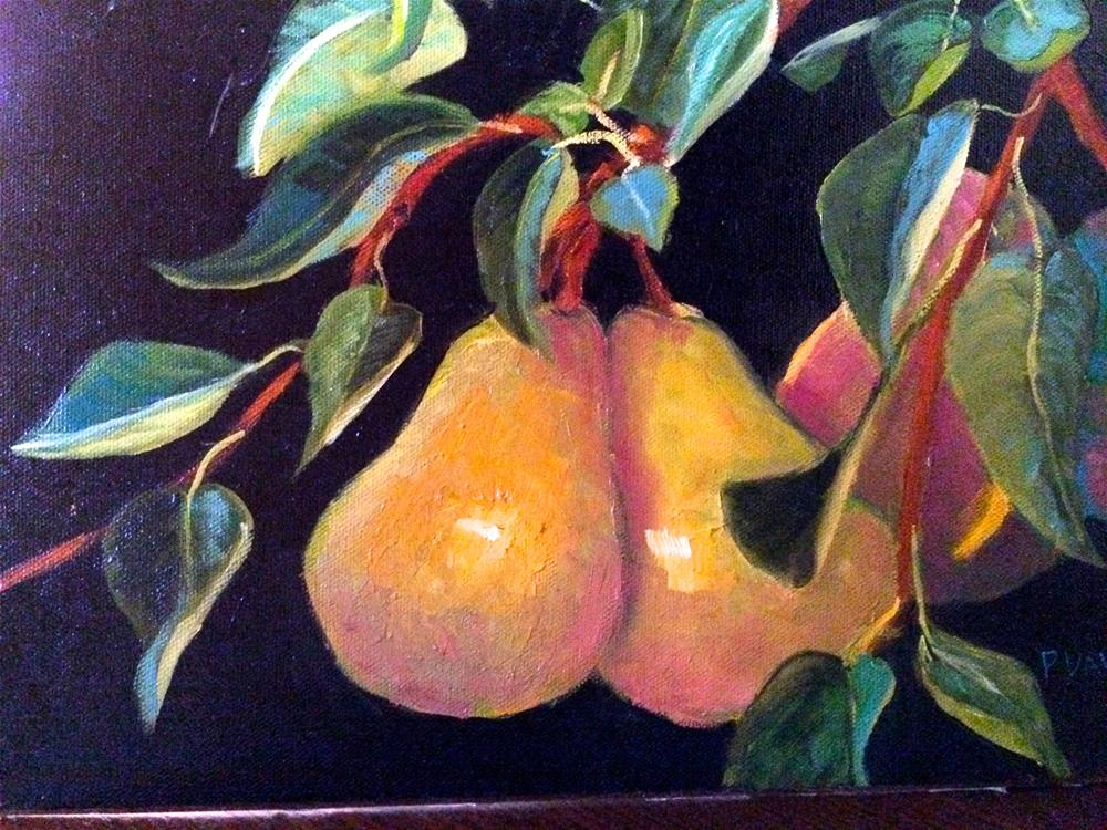 """Pears on Black Canvas"" original fine art by Phyllis Davis"