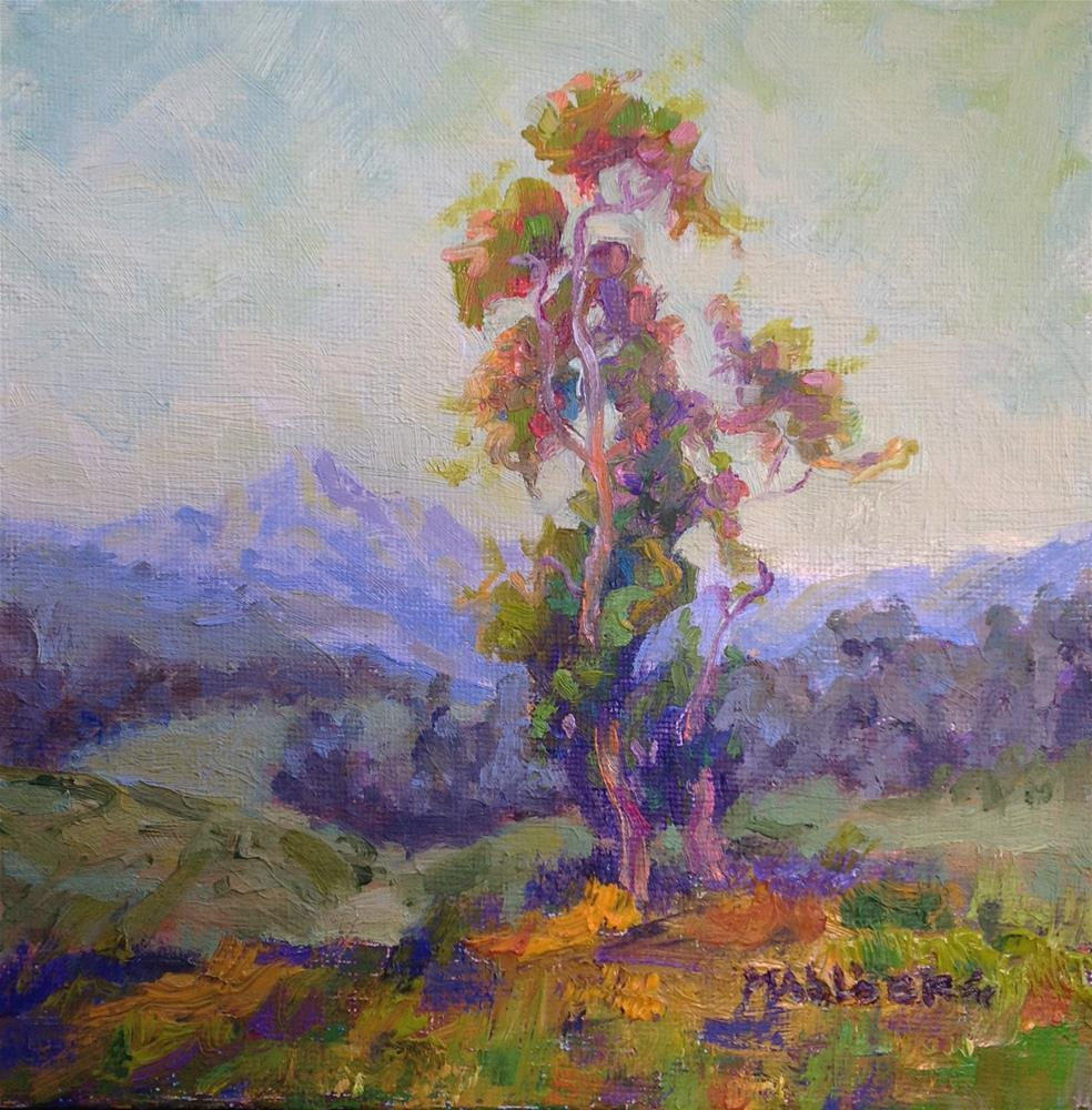 """Eucalyptus Dream, James 3:18"" original fine art by Cynthia Mahlberg"