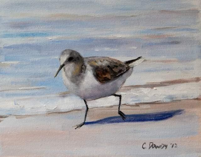 """""""Seabird Series I"""" original fine art by Christina Dowdy"""