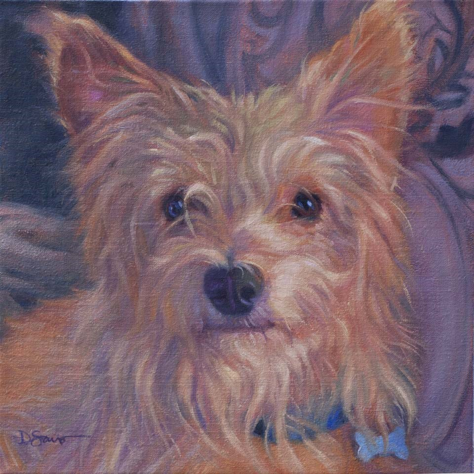 """Archie"" original fine art by Deborah Savo"