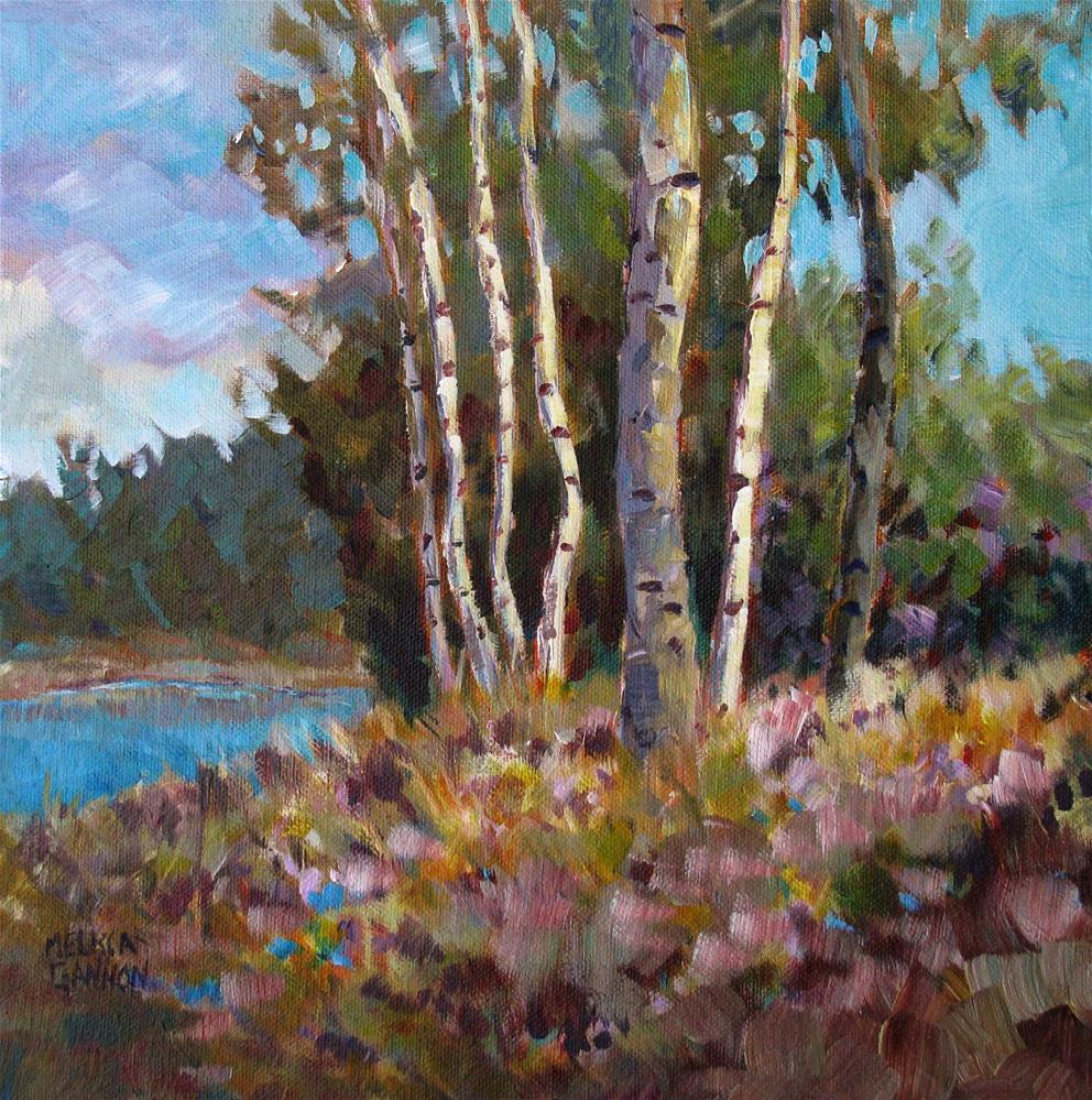 """Sunlight on Trees"" original fine art by Melissa Gannon"